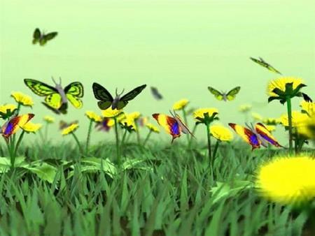 скачать картинки бабочек на телефон